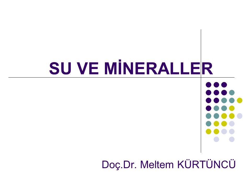 SU VE MİNERALLER Doç.Dr. Meltem KÜRTÜNCÜ