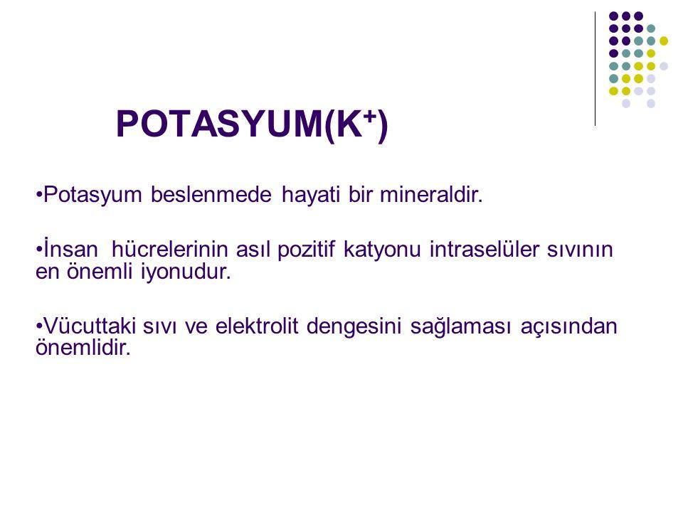 POTASYUM(K + ) Potasyum beslenmede hayati bir mineraldir. İnsan hücrelerinin asıl pozitif katyonu intraselüler sıvının en önemli iyonudur. Vücuttaki s