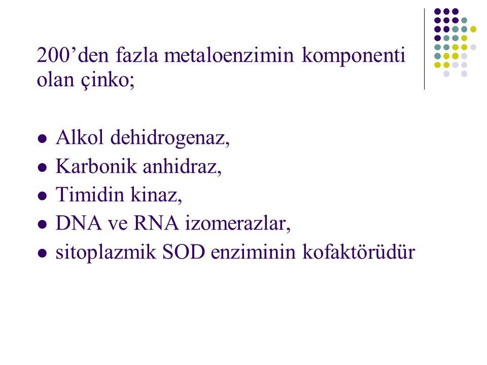 200'den fazla metaloenzimin komponenti olan çinko; Alkol dehidrogenaz, Karbonik anhidraz, Timidin kinaz, DNA ve RNA izomerazlar, sitoplazmik SOD enziminin kofaktörüdür