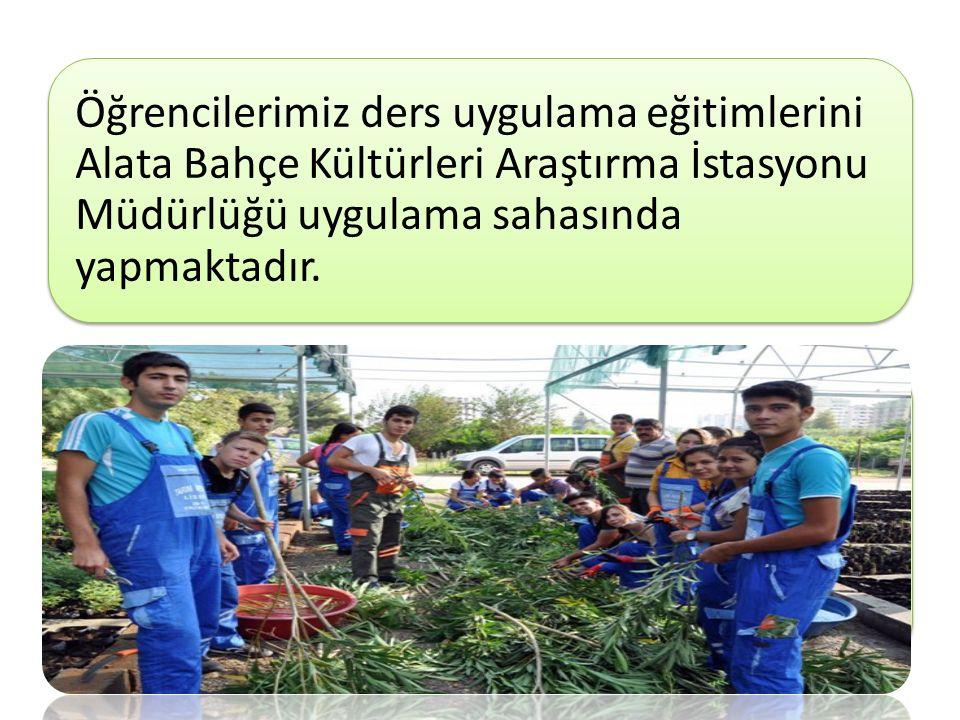 Öğrencilerimiz ders uygulama eğitimlerini Alata Bahçe Kültürleri Araştırma İstasyonu Müdürlüğü uygulama sahasında yapmaktadır.