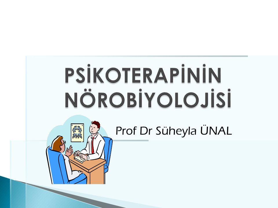 Prof Dr Süheyla ÜNAL