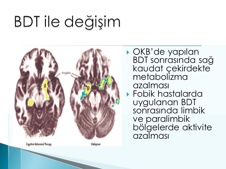 OKB'de yapılan BDT sonrasında sağ kaudat çekirdekte metabolizma azalması  Fobik hastalarda uygulanan BDT sonrasında limbik ve paralimbik bölgelerde