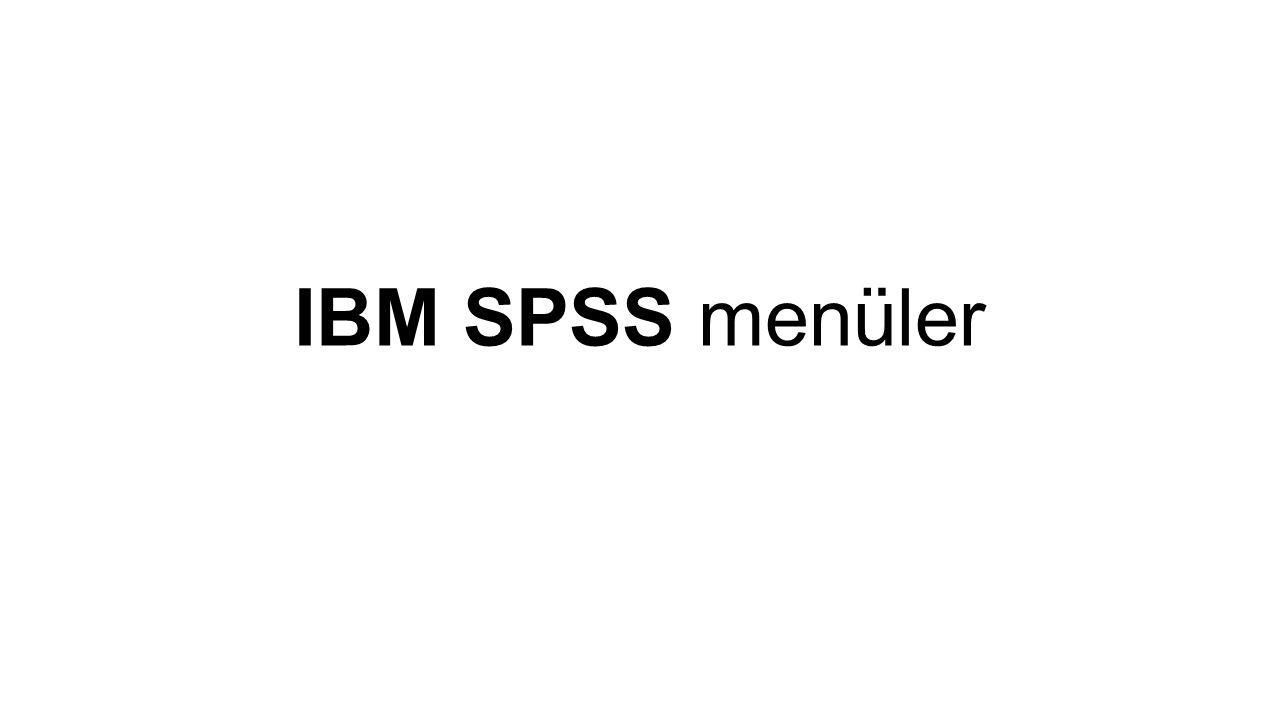 IBM SPSS menüler