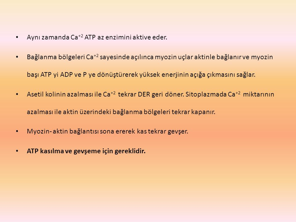 Aynı zamanda Ca +2 ATP az enzimini aktive eder.