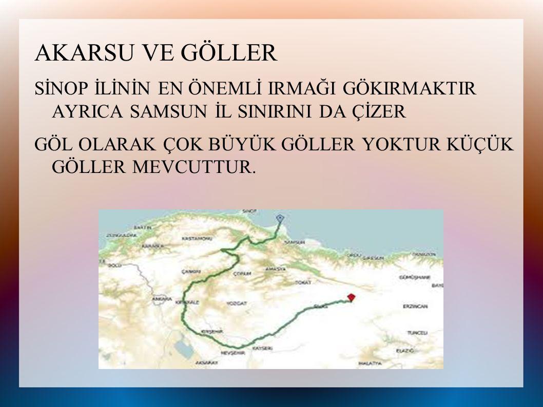 İLÇELER Sinop ili merkez ilçe hariç 8 ilçeden oluşmaktadır.