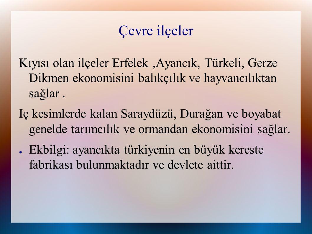 Çevre ilçeler Kıyısı olan ilçeler Erfelek,Ayancık, Türkeli, Gerze Dikmen ekonomisini balıkçılık ve hayvancılıktan sağlar.