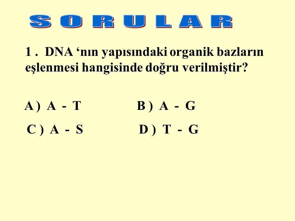 1. DNA 'nın yapısındaki organik bazların eşlenmesi hangisinde doğru verilmiştir.