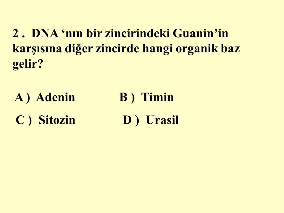 2. DNA 'nın bir zincirindeki Guanin'in karşısına diğer zincirde hangi organik baz gelir.