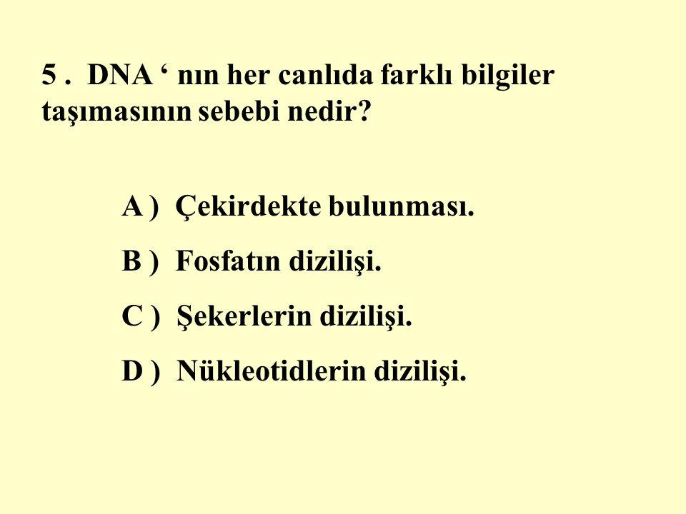 5. DNA ' nın her canlıda farklı bilgiler taşımasının sebebi nedir.