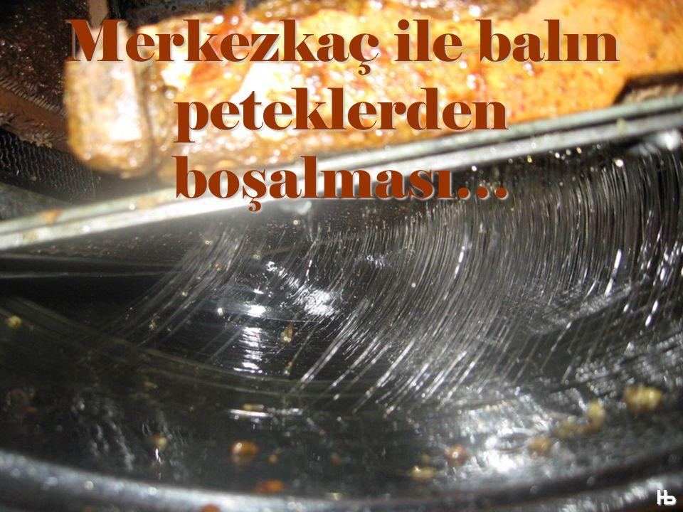Merkezkaç ile balın peteklerden boşalması… Њ