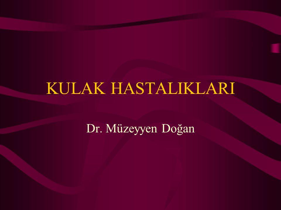 KULAK HASTALIKLARI Dr. Müzeyyen Doğan