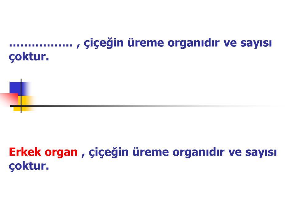 …………….., çiçeğin üreme organıdır ve sayısı çoktur. Erkek organ, çiçeğin üreme organıdır ve sayısı çoktur.