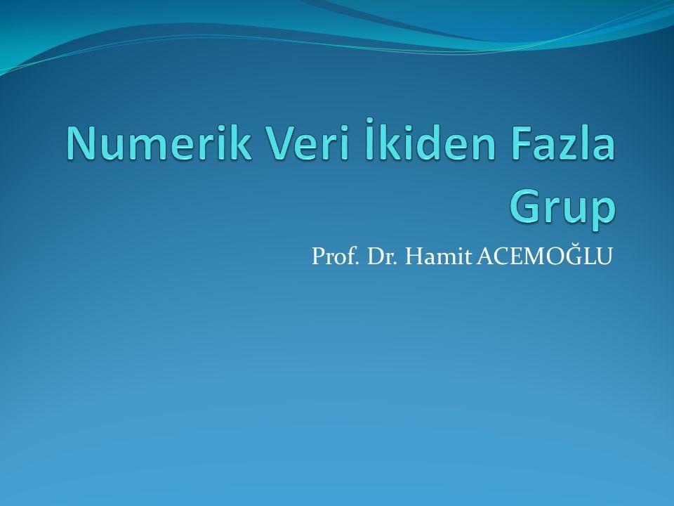 Prof. Dr. Hamit ACEMOĞLU