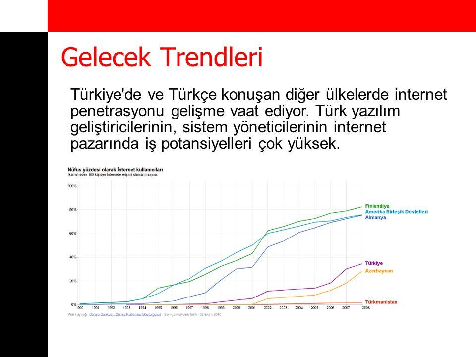 Gelecek Trendleri Türkiye'de ve Türkçe konuşan diğer ülkelerde internet penetrasyonu gelişme vaat ediyor. Türk yazılım geliştiricilerinin, sistem yöne