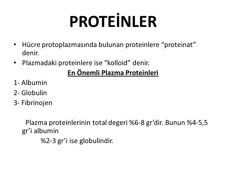 """PROTEİNLER Hücre protoplazmasında bulunan proteinlere """"proteinat"""" denir. Plazmadaki proteinlere ise """"kolloid"""" denir. En Önemli Plazma Proteinleri 1- A"""