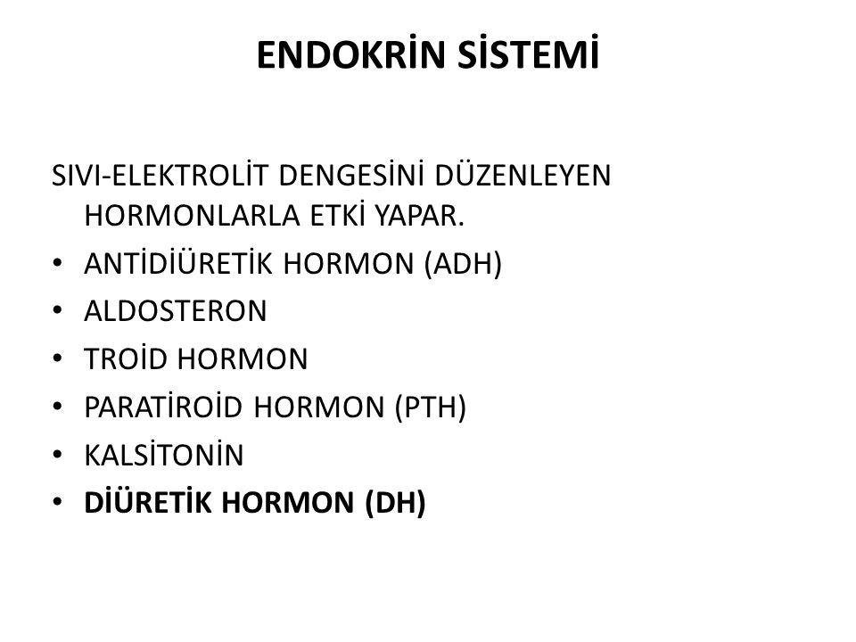 ENDOKRİN SİSTEMİ SIVI-ELEKTROLİT DENGESİNİ DÜZENLEYEN HORMONLARLA ETKİ YAPAR. ANTİDİÜRETİK HORMON (ADH) ALDOSTERON TROİD HORMON PARATİROİD HORMON (PTH
