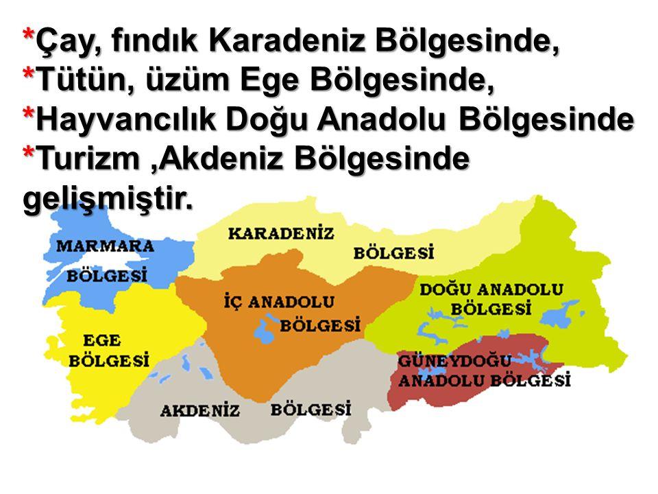 *Çay, fındık Karadeniz Bölgesinde, *Tütün, üzüm Ege Bölgesinde, *Hayvancılık Doğu Anadolu Bölgesinde *Turizm,Akdeniz Bölgesinde gelişmiştir.