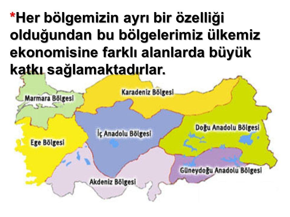 *Her bölgemizin ayrı bir özelliği olduğundan bu bölgelerimiz ülkemiz ekonomisine farklı alanlarda büyük katkı sağlamaktadırlar.