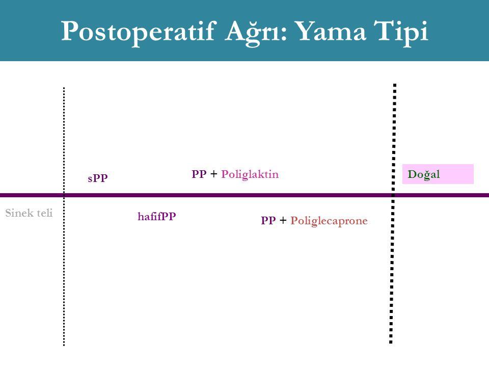 Sinek teli sPP hafifPP PP + Poliglaktin PP + Poliglecaprone Doğal Postoperatif Ağrı: Yama Tipi