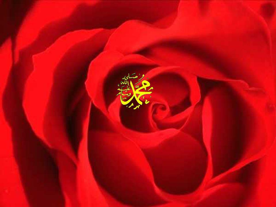 Günler geçiyor Muhammed büyüyordu. 25 yaşına ulaştığında Muhammed'in güzel huyu bütün Mekke'de duyulmuştu. Zaten ona küçüklükten beri Muhammedü'l-Emin