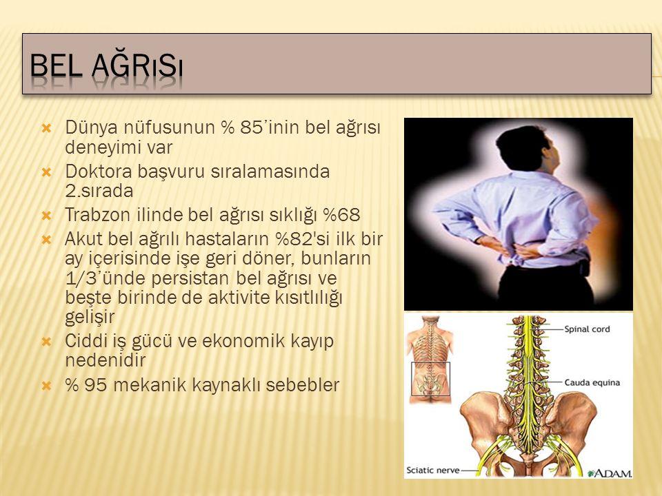  Dünya nüfusunun % 85'inin bel ağrısı deneyimi var  Doktora başvuru sıralamasında 2.sırada  Trabzon ilinde bel ağrısı sıklığı %68  Akut bel ağrılı hastaların %82 si ilk bir ay içerisinde işe geri döner, bunların 1/3'ünde persistan bel ağrısı ve beşte birinde de aktivite kısıtlılığı gelişir  Ciddi iş gücü ve ekonomik kayıp nedenidir  % 95 mekanik kaynaklı sebebler