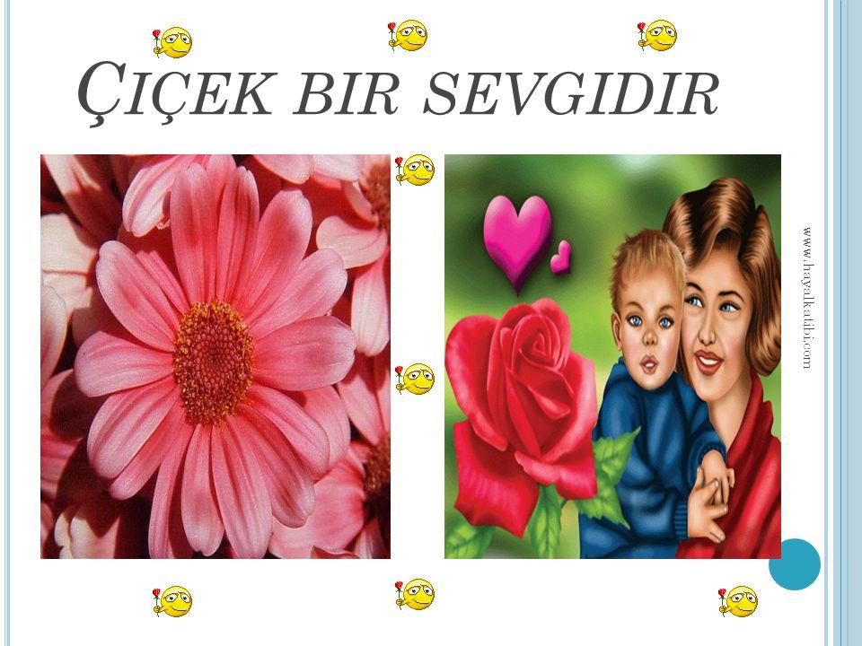 Ç IÇEK BIR SEVGIDIR www.hayalkatibi.com