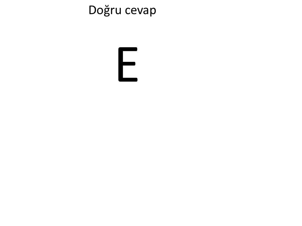 Doğru cevap E
