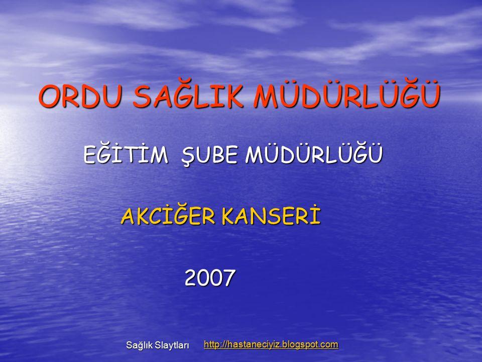 AKCİĞER KANSERİ RİSKİNİ AZALMAK İÇİN YAPILMASI GEREKENLER 1.