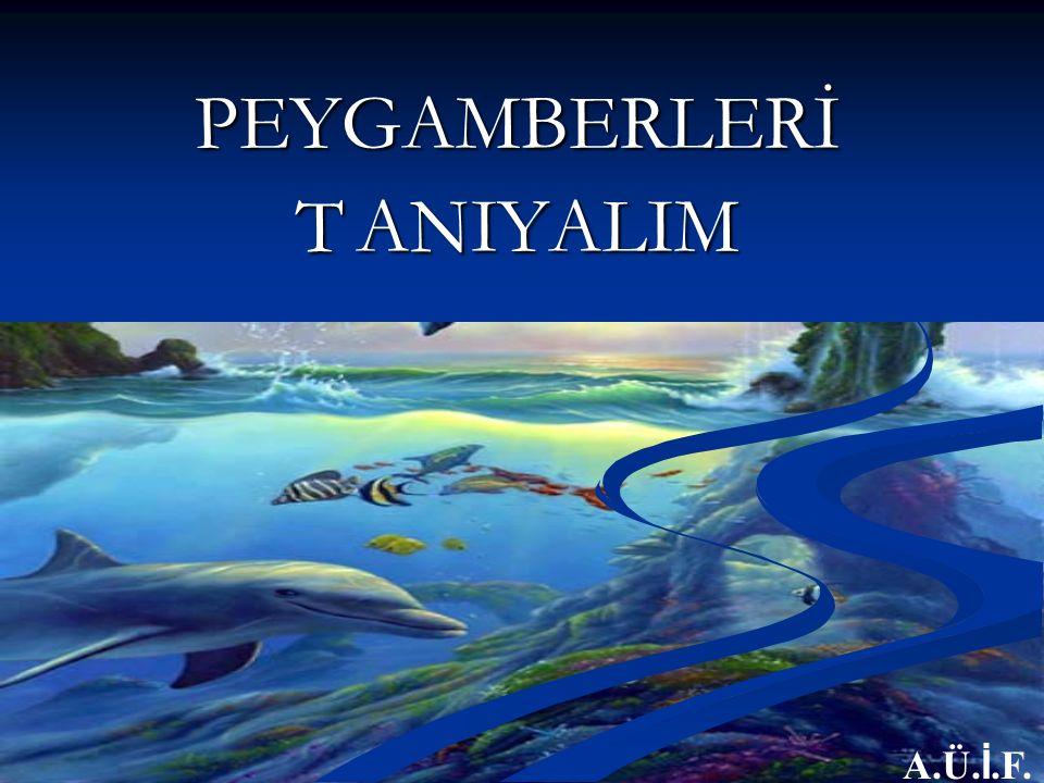 PEYGAMBERLERİ T ANIYALIM A.Ü. İ.F.