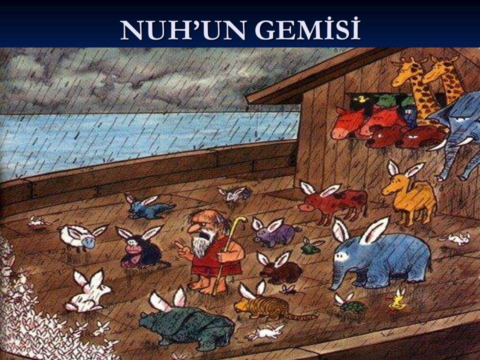 NUH'UN GEMİSİ