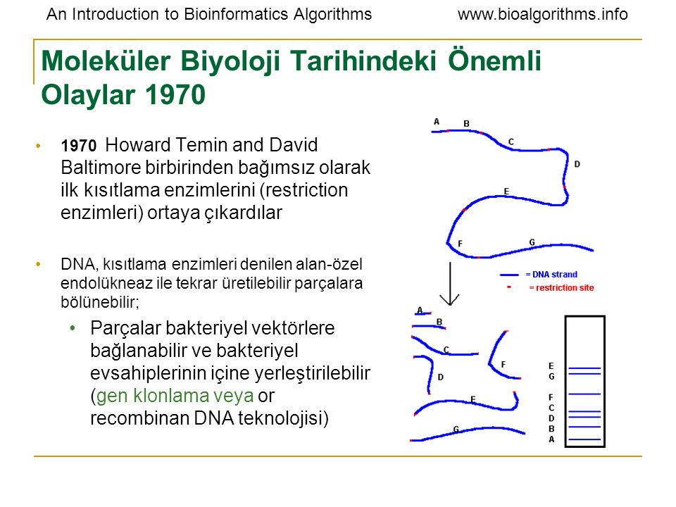An Introduction to Bioinformatics Algorithmswww.bioalgorithms.info Moleküler Biyoloji Tarihindeki Önemli Olaylar 1970 1970 Howard Temin and David Balt