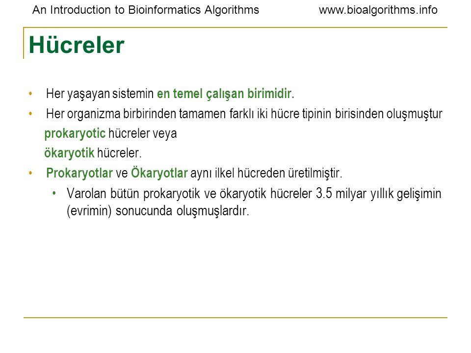 An Introduction to Bioinformatics Algorithmswww.bioalgorithms.info Hücreler Her yaşayan sistemin en temel çalışan birimidir. Her organizma birbirinden
