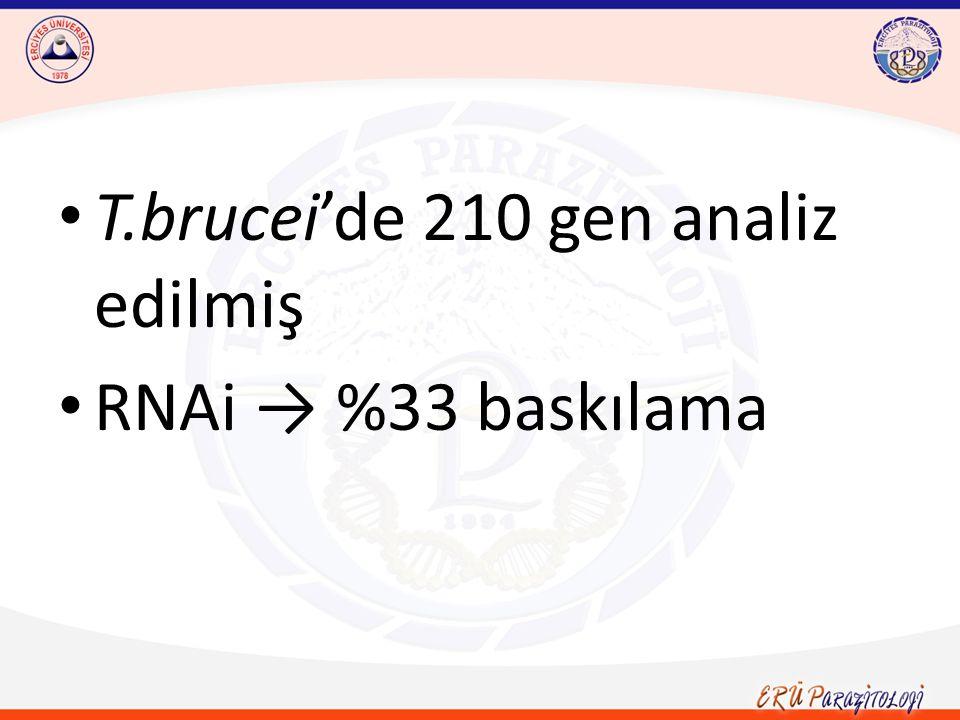 T.brucei'de 210 gen analiz edilmiş RNAi → %33 baskılama