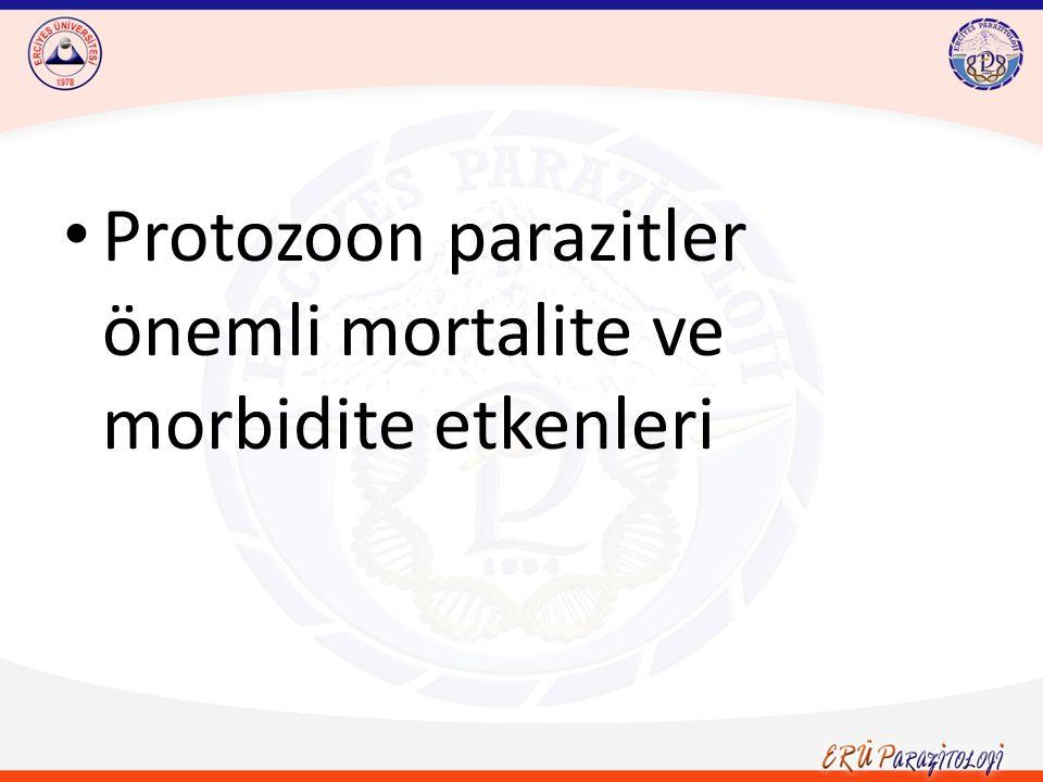 Protozoon parazitler önemli mortalite ve morbidite etkenleri