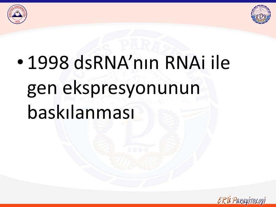 RNAi'nin gen fonksiyonu analizinde bir araç olarak kullanılması için dsRNA'nın tetrasiklin aracılı ekspresyonundan faydalanılmaktadır