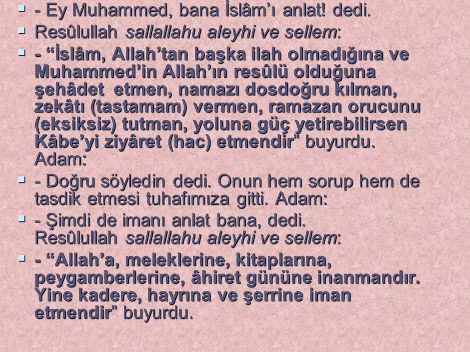 """ - Ey Muhammed, bana İslâm'ı anlat! dedi.  Resûlullah sallallahu aleyhi ve sellem:  - """"İslâm, Allah'tan başka ilah olmadığına ve Muhammed'in Allah'"""