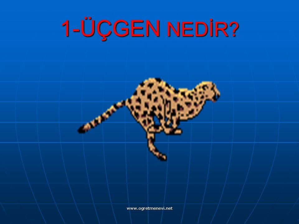 www.ogretmenevi.net 1-ÜÇGEN NEDİR?