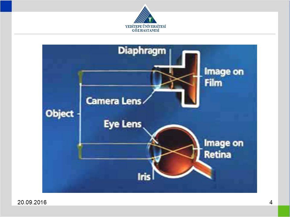 YEDİTEPE ÜNİVERSİTESİ GÖZ HASTANESİ 20.09.201615 Hyperopia The refractive power of the eye is too weak so that light focuses behind the retina Total Manifest Latent