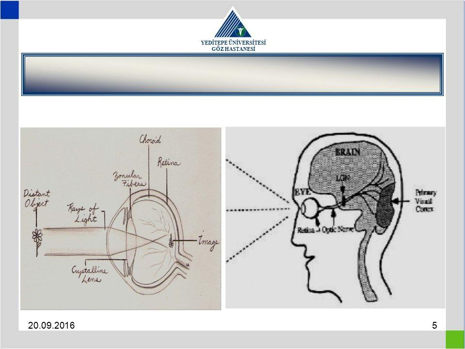 YEDİTEPE ÜNİVERSİTESİ GÖZ HASTANESİ 20.09.20166 Refractive State of The Eye Corneal power (mean, 43 D) Anterior chamber depth (mean, 3.4 mm) Crystalline lens power (mean, 21 D) Axial length (mean, 24 mm)