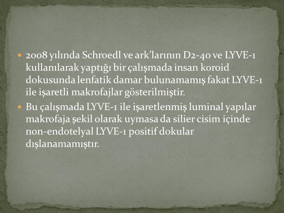 2008 yılında Schroedl ve ark'larının D2-40 ve LYVE-1 kullanılarak yaptığı bir çalışmada insan koroid dokusunda lenfatik damar bulunamamış fakat LYVE-1 ile işaretli makrofajlar gösterilmiştir.