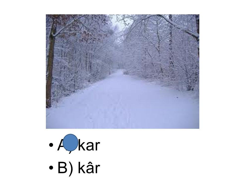 A) kar B) kâr