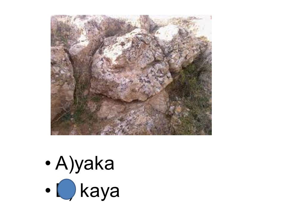 A)yaka B) kaya