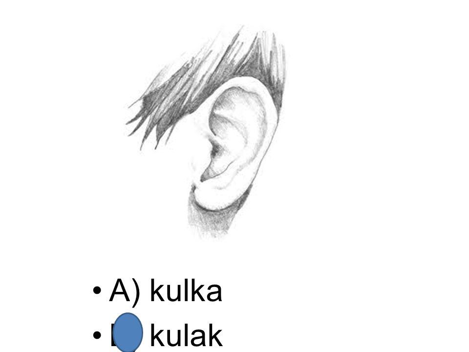 A) kulka B) kulak