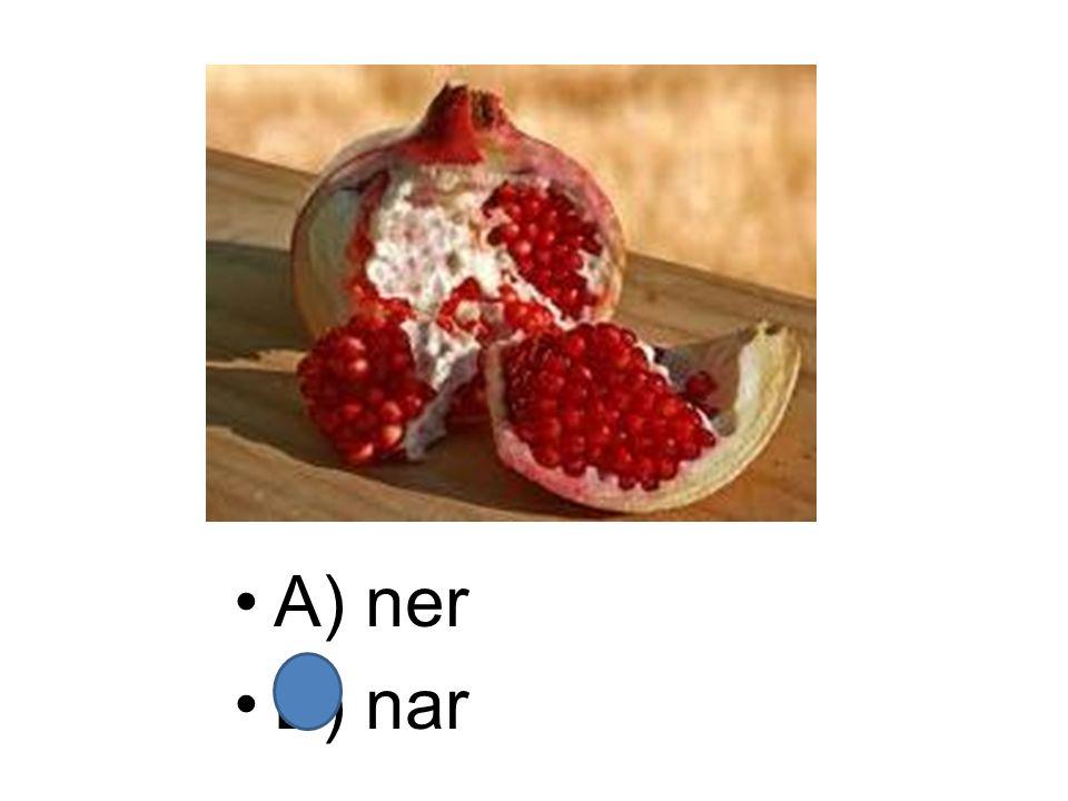 A) ner B) nar