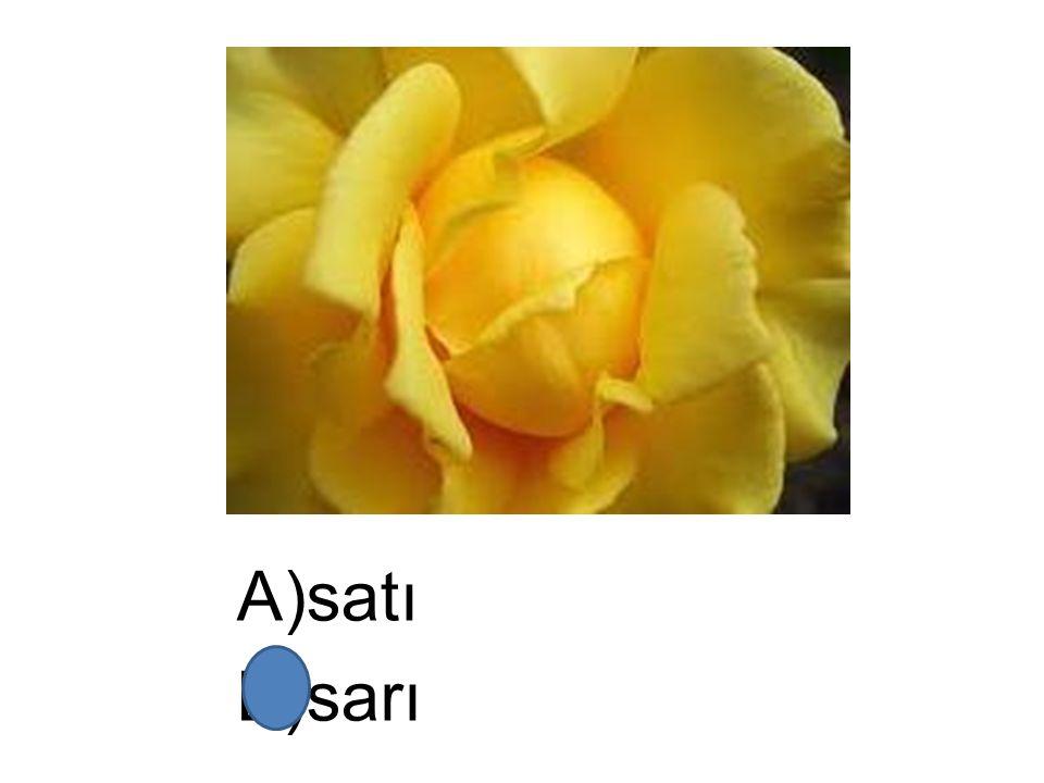 A)satı B)sarı