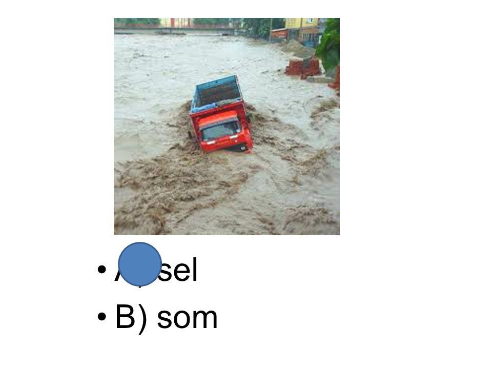 A) sel B) som