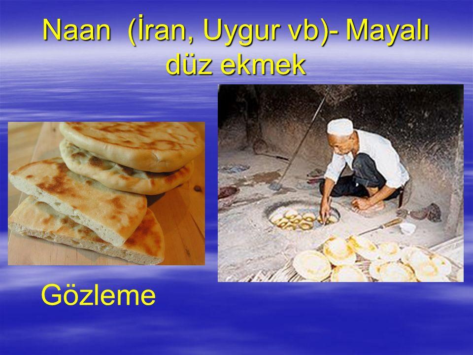 Naan (İran, Uygur vb)- Mayalı düz ekmek Gözleme