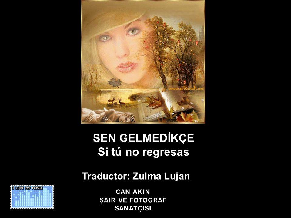 SEN GELMEDİKÇE Si tú no regresas Traductor: Zulma Lujan
