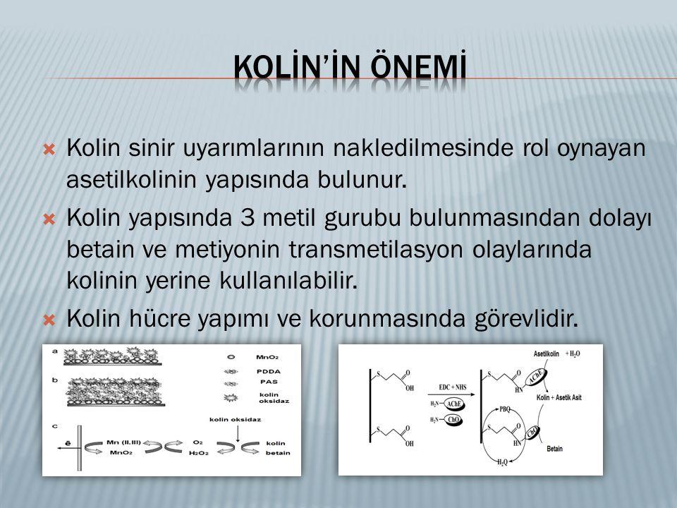  Kolin sinir uyarımlarının nakledilmesinde rol oynayan asetilkolinin yapısında bulunur.