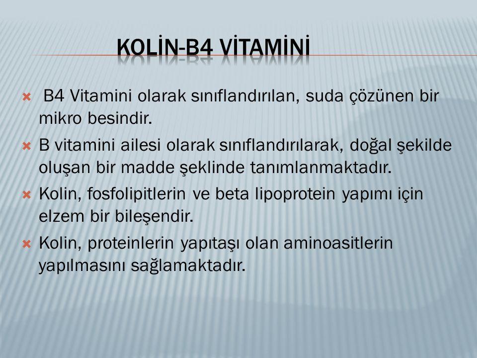  B4 Vitamini olarak sınıflandırılan, suda çözünen bir mikro besindir.